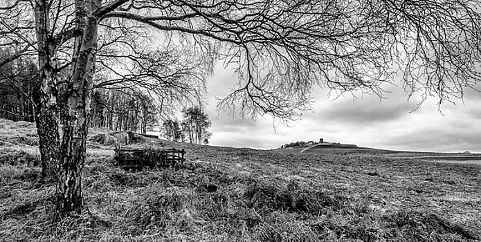 Distant Folly by Nick Bywater
