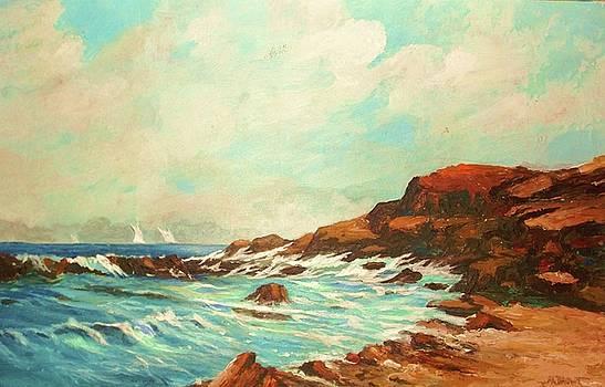 Distant Sails  by Al Brown