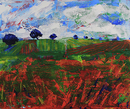 Distant vineyards by Walter Fahmy