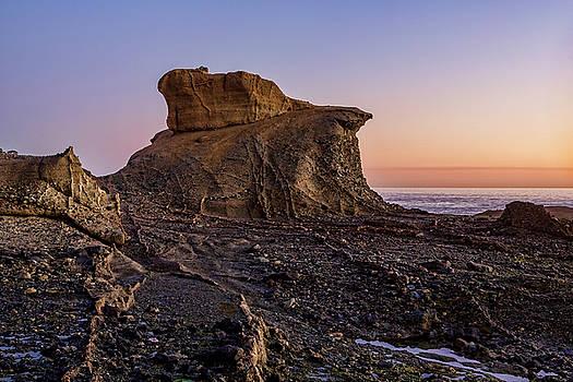 Distinctive Rock Aliso Beach by Kelley King