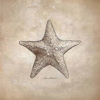 Distressed Antique Nautical Starfish by Karen Whitworth