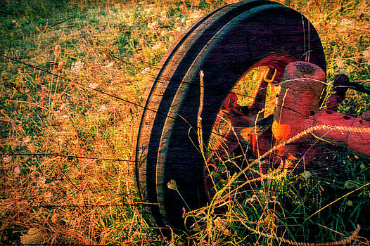 Distressed old Tractor by Paul Cullen