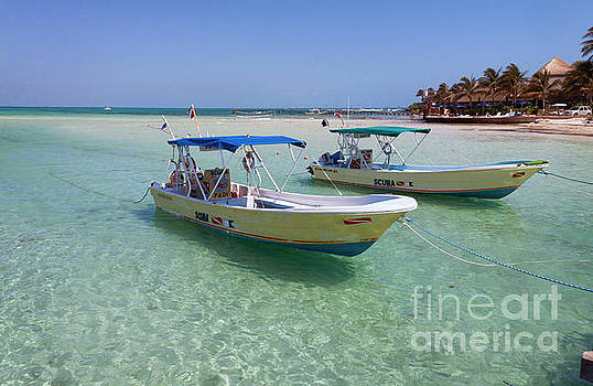 Dive Boats on Isla Mujeres II by David Daniel