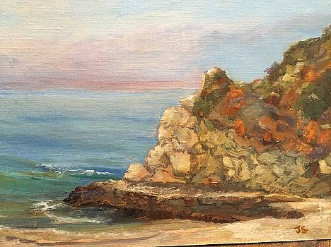Divers Cove 1 by Joyce Snyder