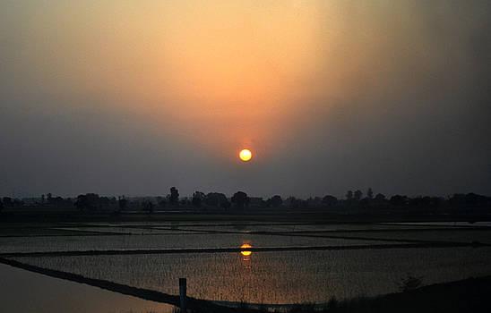 Bliss Of Art - Divided sun of land