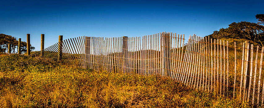 Dividing Fence by LB Christopher