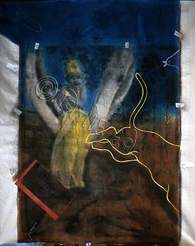 Divine Witness by Vinod Dave
