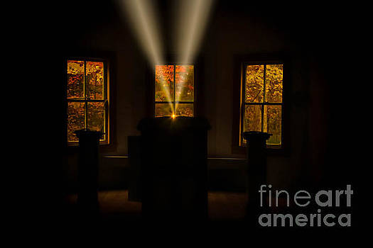 Divine Words, Divine Light by Geraldine DeBoer