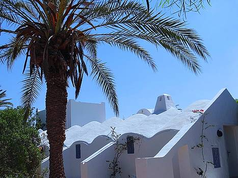 Djerba Roofline by Exploramum Exploramum