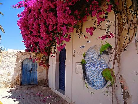 Djerba Street Art - Bougainvillaea delight by Exploramum Exploramum