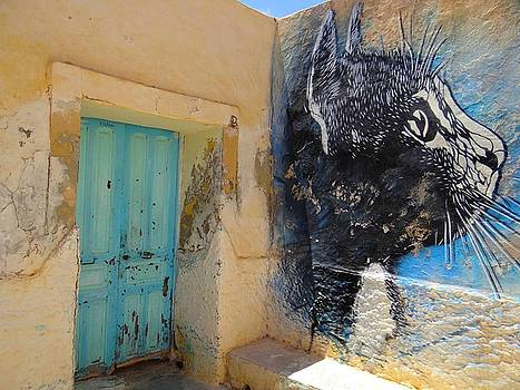 Djerba Street Art - Cat and doorway by Exploramum Exploramum