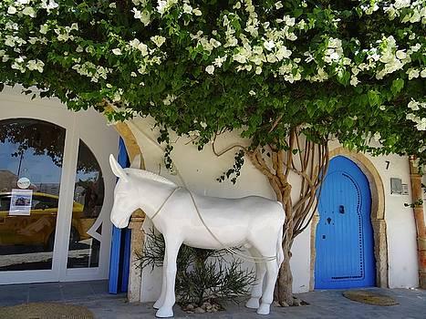 Djerba Street Art - Dead Horse by Exploramum Exploramum