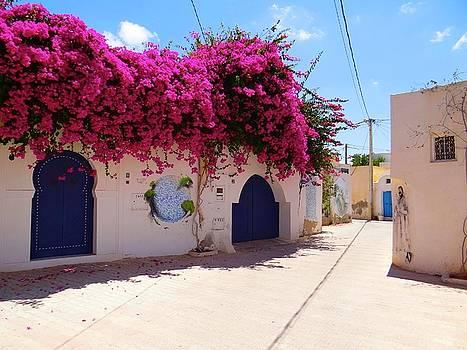 Djerba Street Art - Floral Streets by Exploramum Exploramum