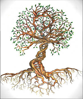 DNA Tree of Life by Joanna Aud