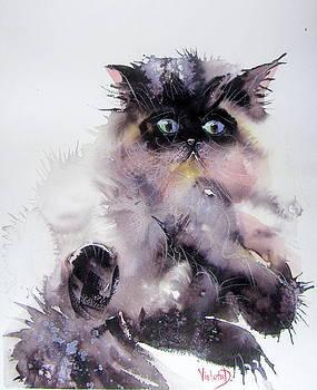 Do not disturb Meow by Violeta Damjanovic-Behrendt