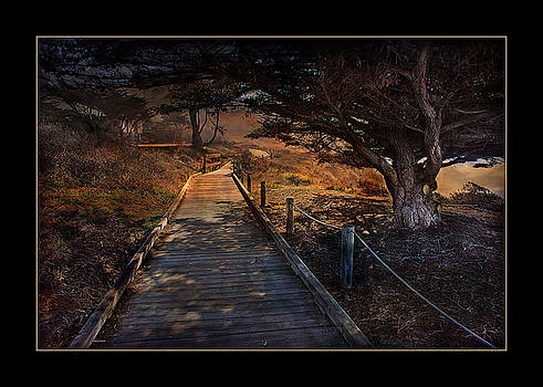 Do Not Follow Where The Path May Lead by Bob Kramer