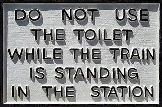 Do Not Use Toilet by Pat Turner