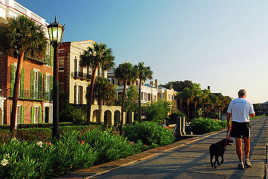 Do the Charleston Dog Walk by James Kirkikis