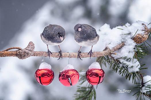 Do You Hear Santa? by Peg Runyan