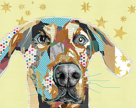 Doberman Collage by Claudia Schoen