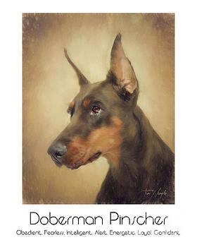 Doberman Pinscher Poster by Tim Wemple