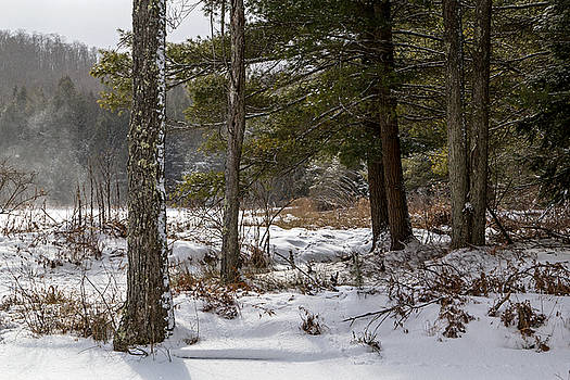 Doc Lee Rd in the Winter by Frank Morales Jr