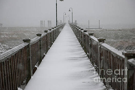 Dock Covered in Snow by Dale Powell