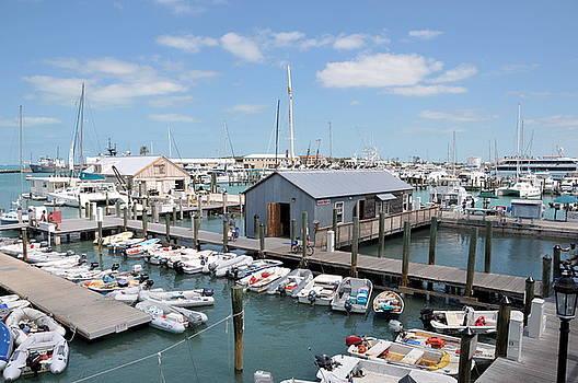 Dock Florida Keys by Jerry Frishman