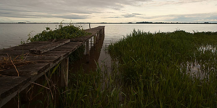Dock In The Morning by Ron Dubin