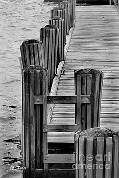 Dock on the Potomac by E B Schmidt