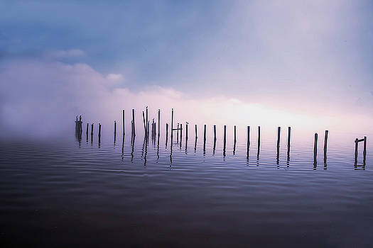 Dock Posts by Nancie Rowan