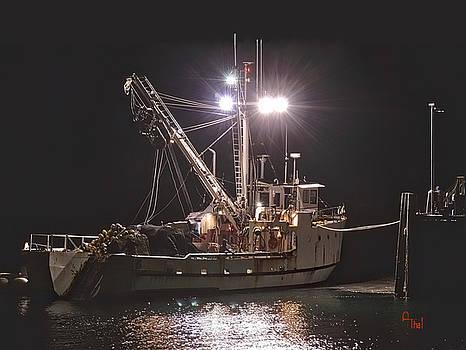 Docking 2 by Alan Thal