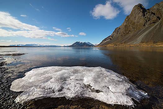 Docking Ice by Svetlana Sewell
