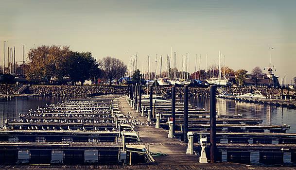 Docks at Lake City by Susan Stone