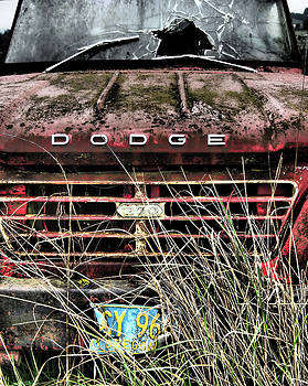 Dodge 200 by Kevin Felts