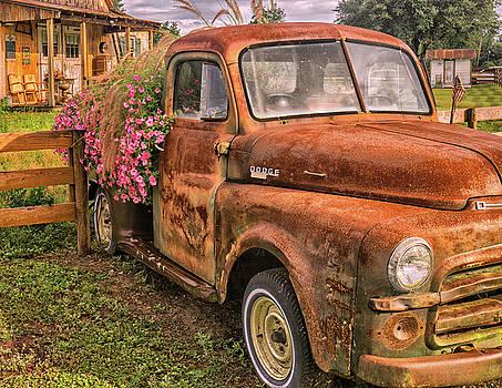 Dodge Flower Pot by Dennis Dugan