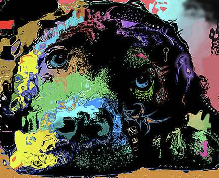 Dog #221 by Nicholas Nixo