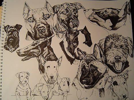 Dog Collage by Raymond Nash