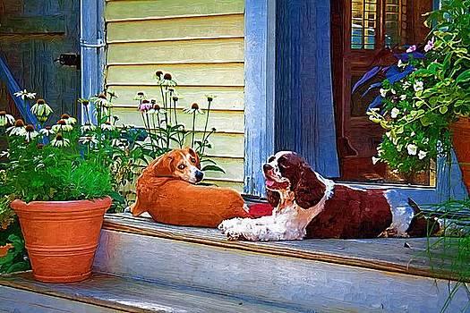 Dog Day Afternoon by John Ellis