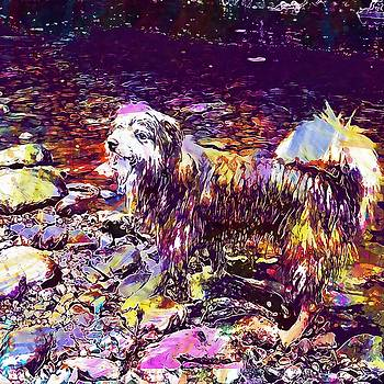 Dog Happy River Nature Water Play  by PixBreak Art