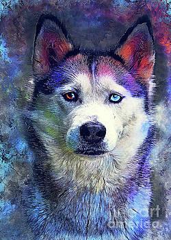 Dog Husky art by Justyna JBJart