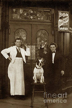 California Views Archives Mr Pat Hathaway Archives - Dog on a bar Stool with bartender and an other man in front of a