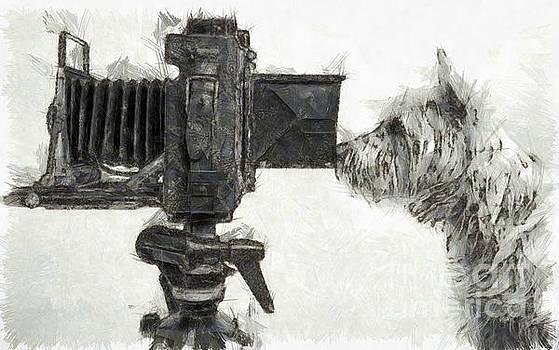 Edward Fielding - Dog Photographer Pencil