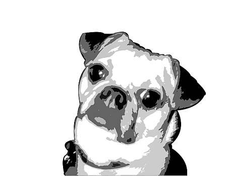 Kathy Stanczak - Dog Portrait