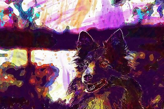 Dog Sheltie Close Trees  by PixBreak Art