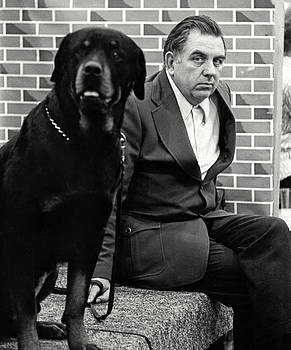 Dog Show 2 by David Gilbert