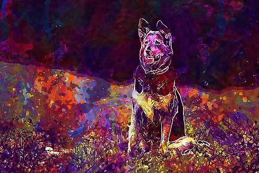 Dog Sitting Canine Summer Doggy  by PixBreak Art
