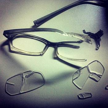 Dog Vs Reading Glasses:  The Dog Won by T Cook