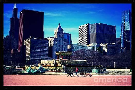 Frank J Casella - Dog Walking City of Chicago