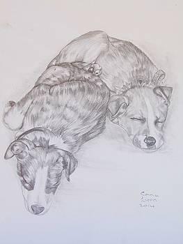Doggies by Emma Lyon